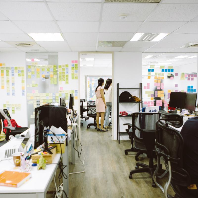 在 Kono 管理職與技術職,職涯雙軌發展